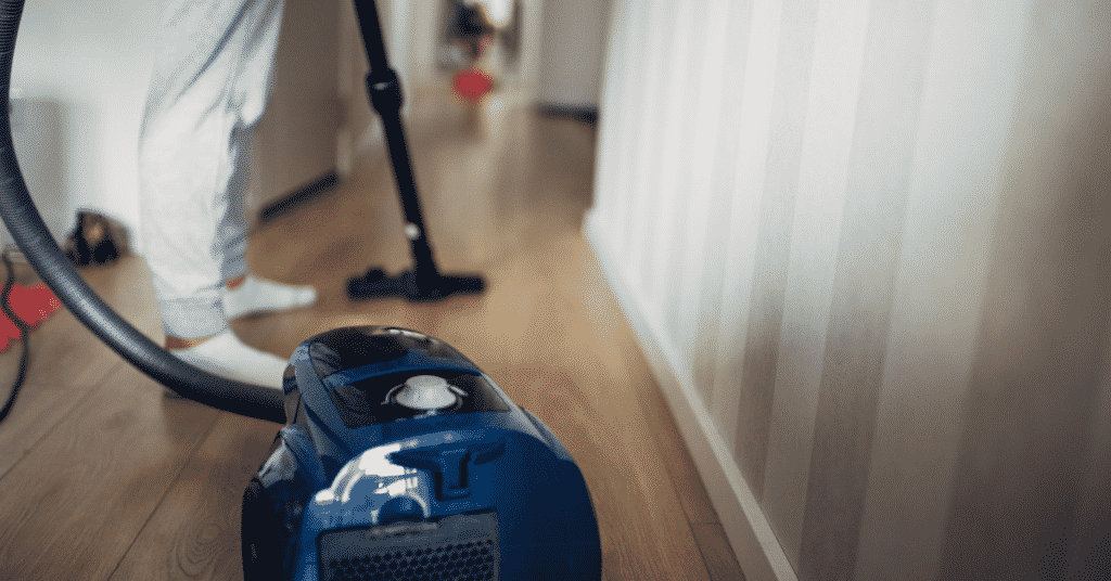 Vacuuming is one of the home remedies for fleas on cats believe it or not