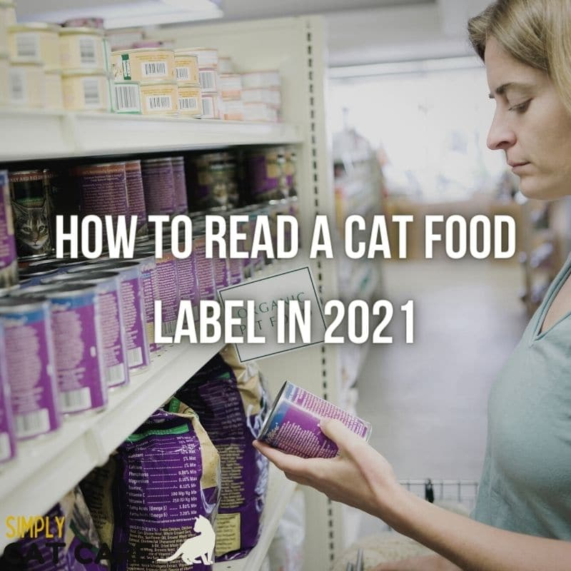 How to Read a Cat Food Label in 2021