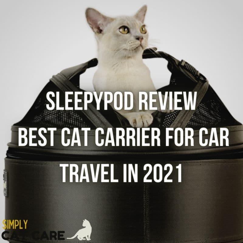 Sleepypod Review: Best Cat Carrier for Car Travel in 2021