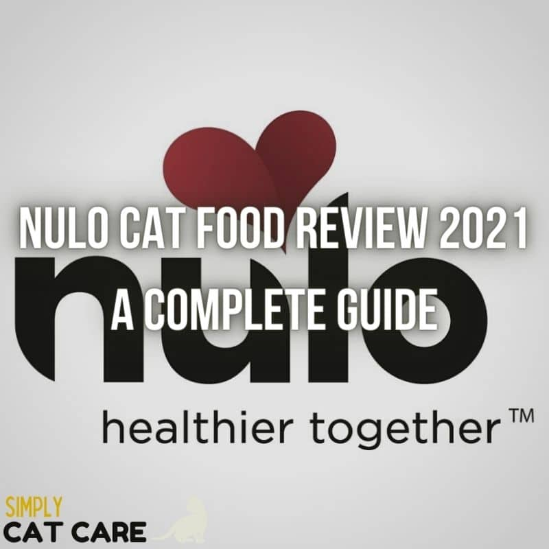 Nulo Cat Food Review in 2021:  A Complete Guide