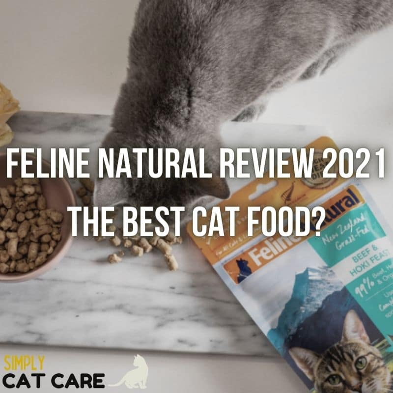 Feline Natural Review 2021: The Best Cat Food?