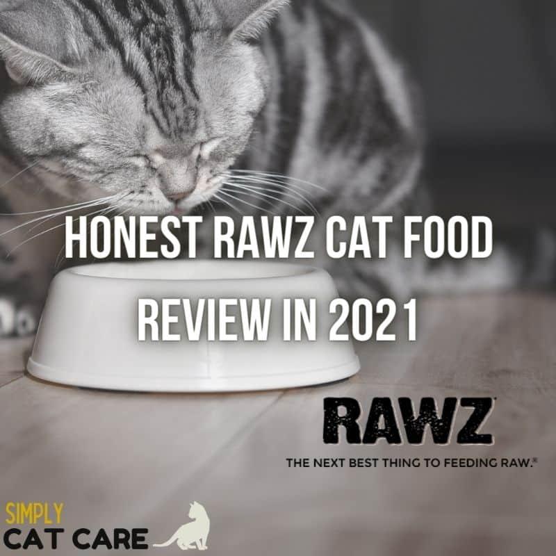 Honest Rawz Cat Food Review 2021